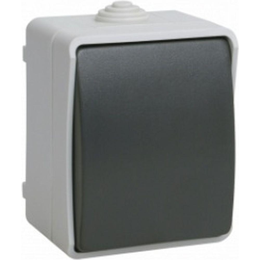 1-клавишный выключатель IEK ОП Форс 10А 250В IP54 BC20-1-0-ФСр ИЭК EVS10-K03-10-54-DC